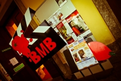 BMB4b_019